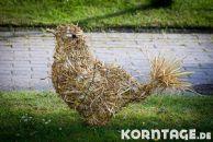 Korntage_2012-0891