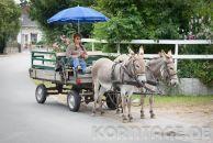 Korntage-0291