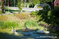 Strohfiguren_Barsbek-0336