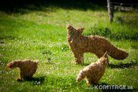 Strohfiguren_Krummbek-0504